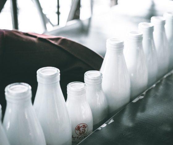 牛乳瓶_違い