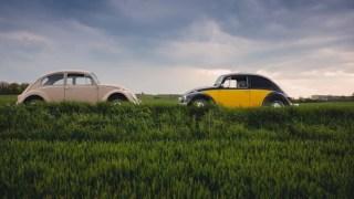無保険事故にも2つある、2台の車