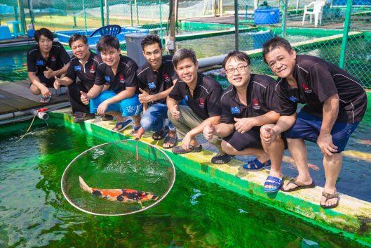 Marugen Koi Farm Team Photo