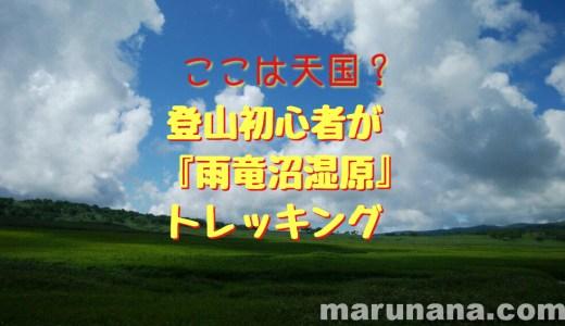 【登山】ここは天国?初心者が北海道の尾瀬『雨竜沼湿原』をトレッキング(7月下旬)