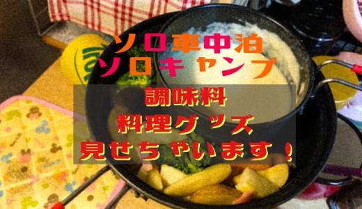 【車中泊】調味料・料理道具・便利グッズを見せちゃいます!(ソロ車中泊・ソロキャンプ)
