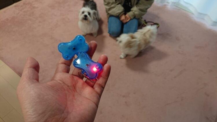 光る犬のお散歩ライト