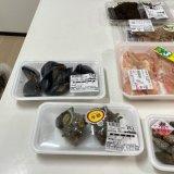 あさり、ムール貝、サザエ本日の食材