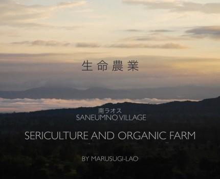 ラオス農園の取り組み紹介ポートフォリオ