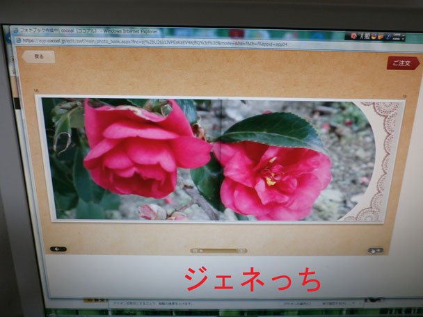 ココアル花の写真も素敵です