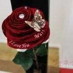 プレミアムモデルのメッセージフラワー赤バラ