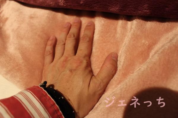 メルトロ 生地触ってみた。きめ細かくてずっと、触っていたくなりました。