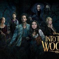 Critique : Into the Woods, Promenons-nous dans les bois