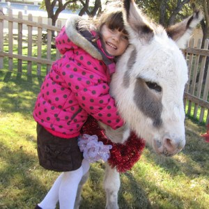 preschool girl hugging Oliver the donkey