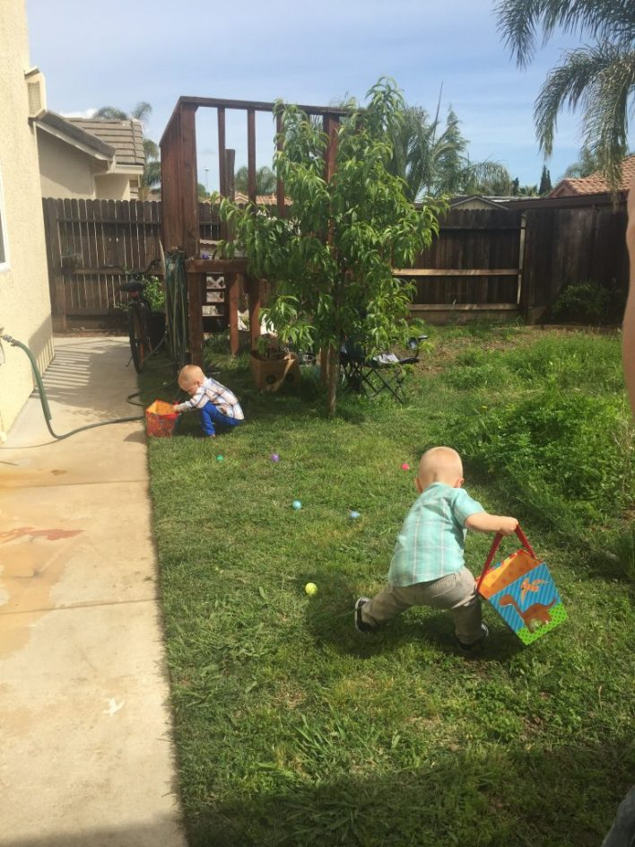 Two toddlers looking for Easter eggs in grassy backyard