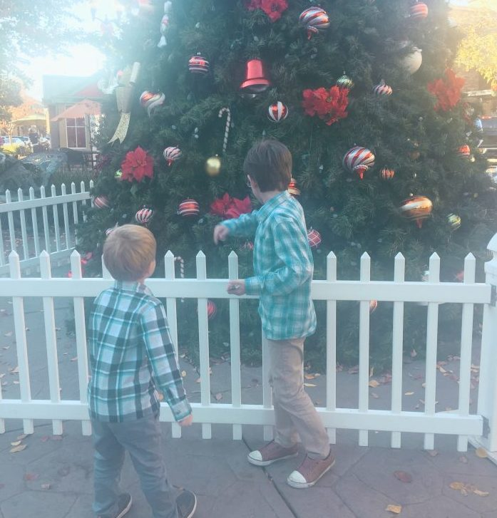 surviving the holidays as an autism family
