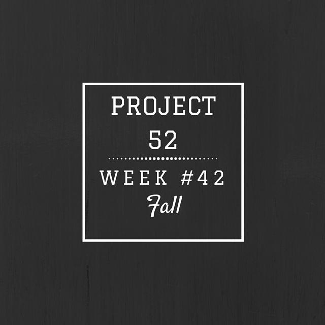 Project52week42