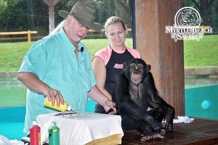 chimp (176) BLOG