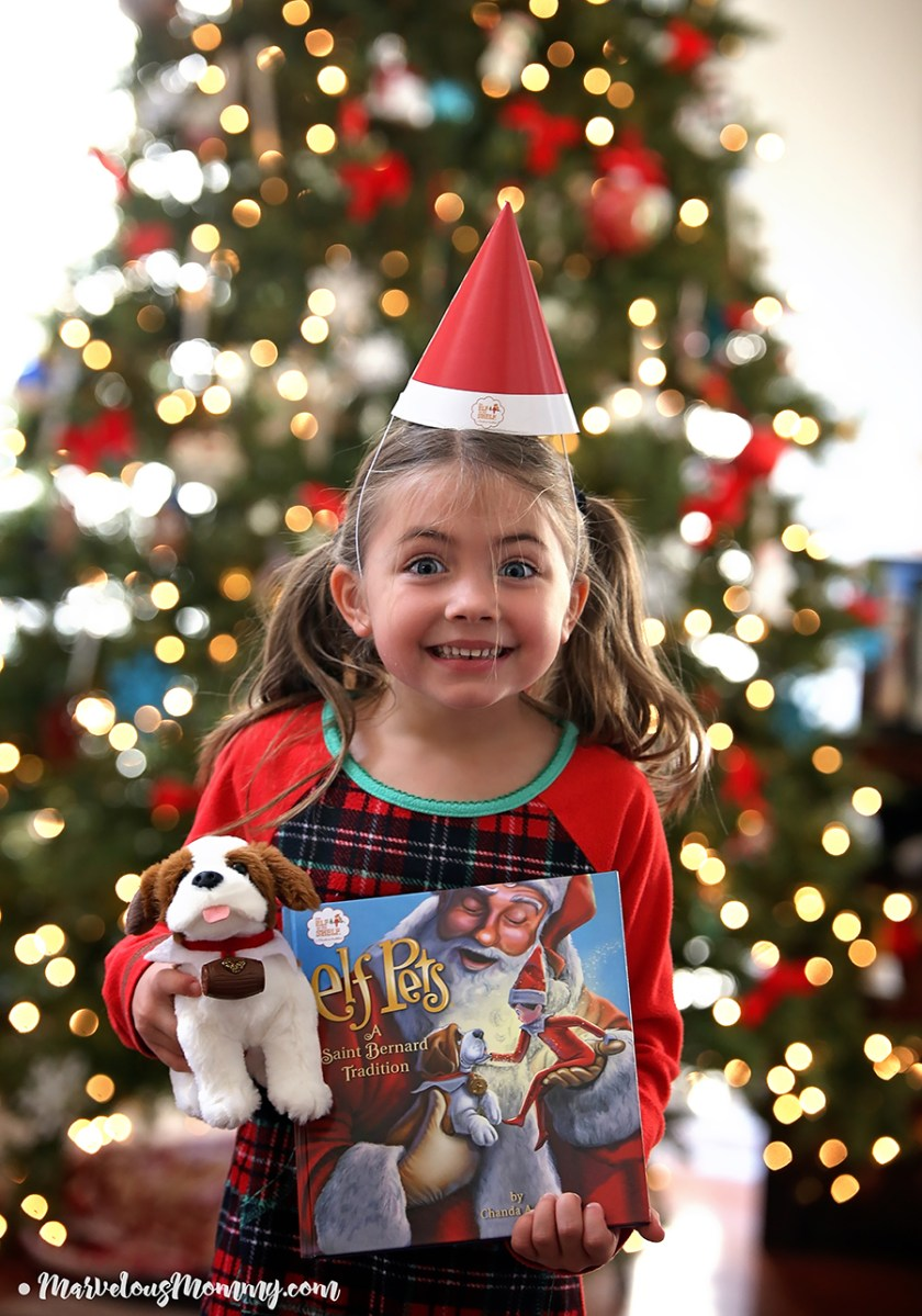 The Elf On The Shelf 174 Welcome Back Celebration