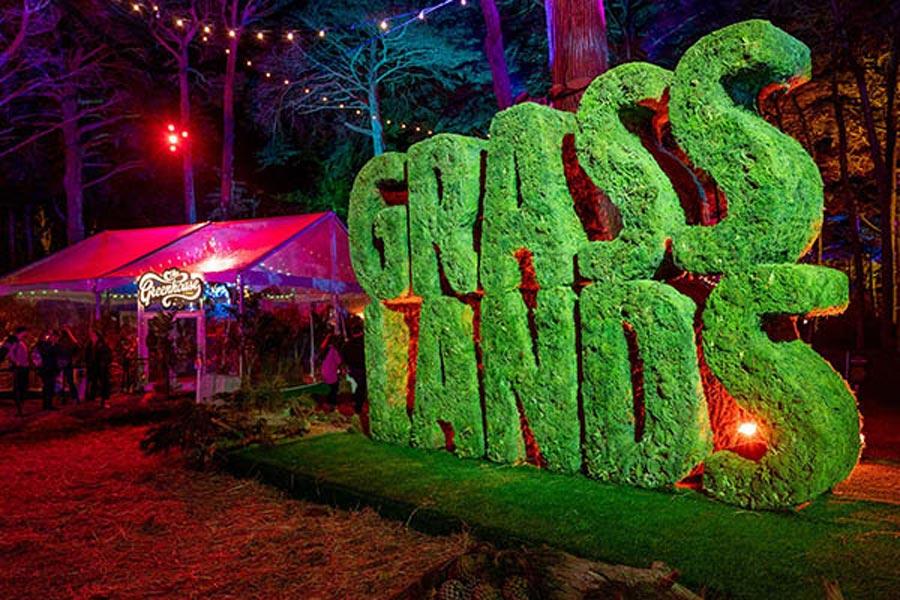 outside-lands-primer-festival-cannabis-grasslands