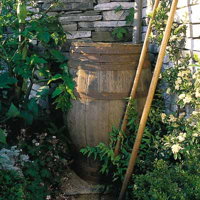 Do You Know the Many Benefits of Garden Rain Barrels?