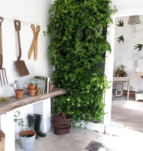 Garden Favorites from the Shippan Designer Show House
