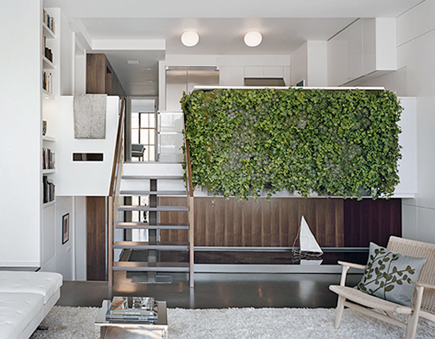 The Beauty of Vertical Gardens
