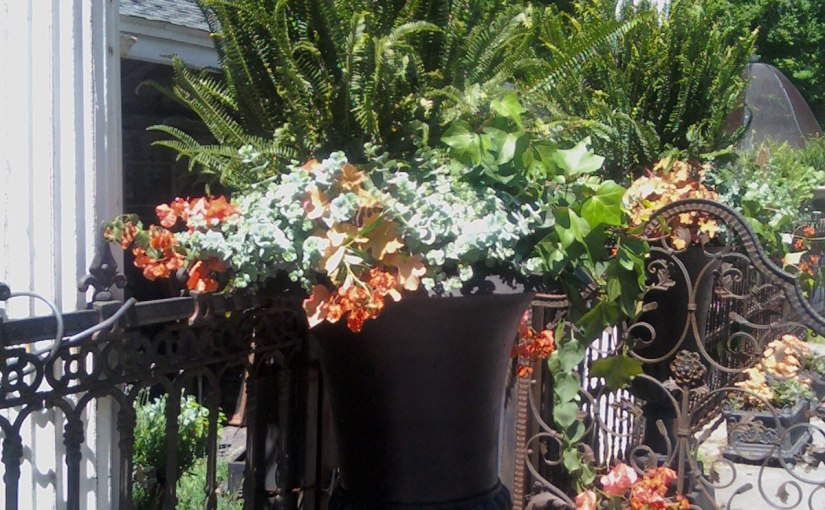 Luxurious Low Maintenance Container Planting at Your Home