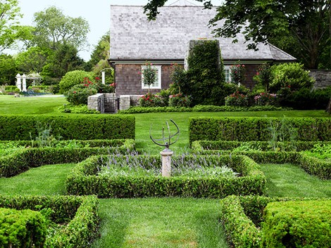 The Overlooked Benefits of Landscape Hedges