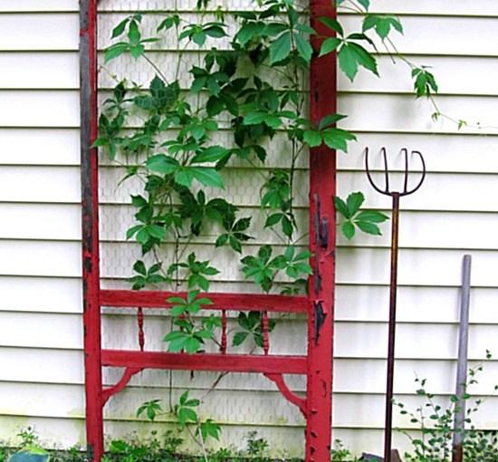 3 Creative Tools To Help a Garden Grow Vertically