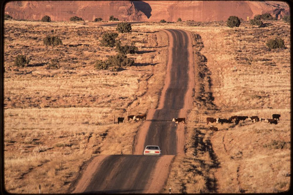 USA roads, western roads, truck