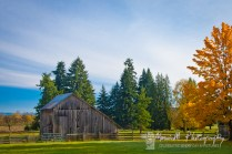 Fall day in the countryside between Canby and Molino, Oregon