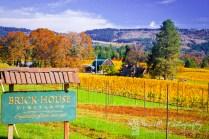 Brick House Vineyards; North or Newberg, Oregon