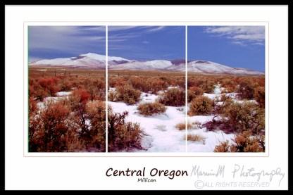 millican triptych
