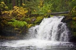 north and west of Diamond Lake, Oregon