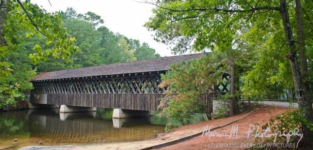 At park near Stone Mountain; Atlanta, Georgia
