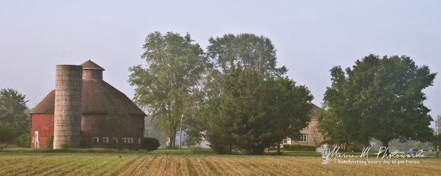 "On a foggy late-May morning, this is my first ""real"" round barn.... It's on the east side of Jupiter Rd about 5 miles north of Bremen. Late May is my preferred time to photograph farm scenes in the Midwest; the fields have rows and definition, are walkable and not photo-obstructive."