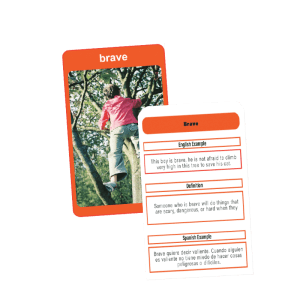 AR learning app flash cards