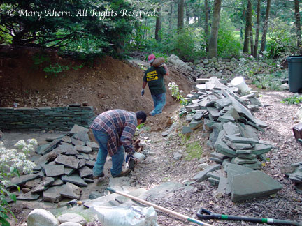 The crew dismantling my carefully and painfully built stone walls.
