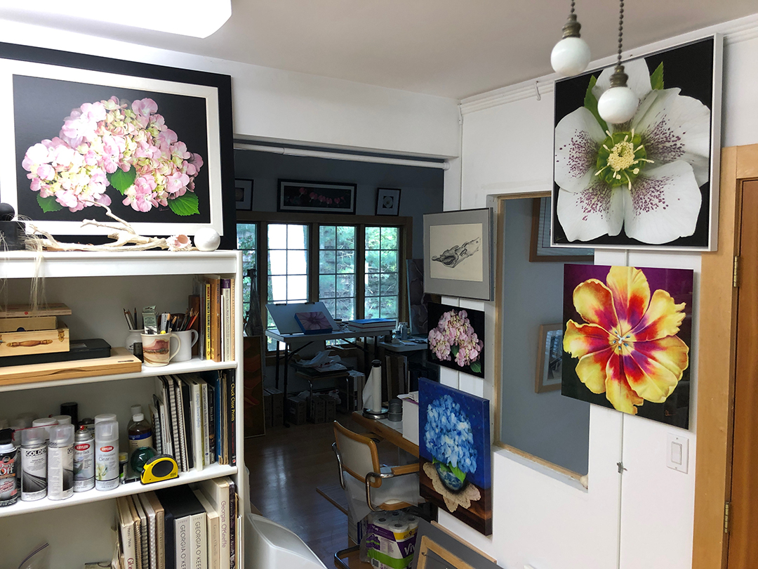 Studio of Mary Ahern Artist