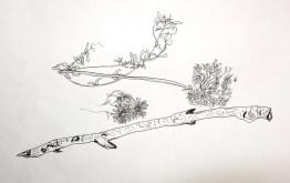 Drawing Concepts I 1