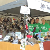 Shasta Wildlife Rescue - Run for the Wild