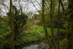Kilkenny 8