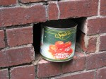 Tomato in the Wall