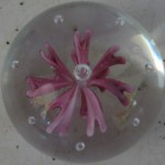paperweight1