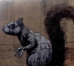 Roa | Squirrel Brooklyn New York