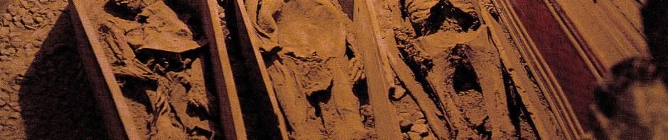 St. Michan's Church crypt   Dublin