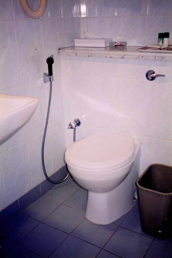 UAE toilet