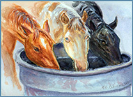 """Drinking Out Of The Trough,"" watercolor portrait of three horses"