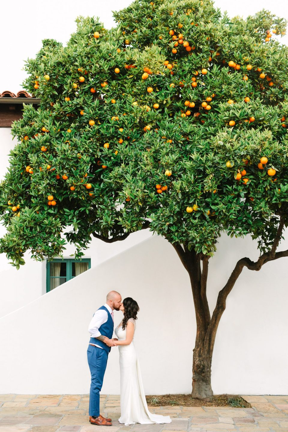 Couple kissing by orange tree by Mary Costa Photography