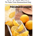 Lemons to Lemonade; Save Your Day With These 10 Phrases