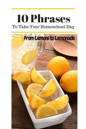 10 PhrasesThat will change Your HomeschoolDayFrom LemonsTo Lemonade