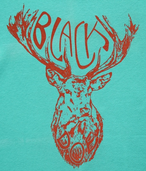 Black Doe T-shirt mint & coral WEB