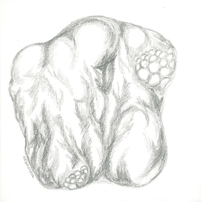 Imaginary rock, pencil, Mary Warner, 2014.