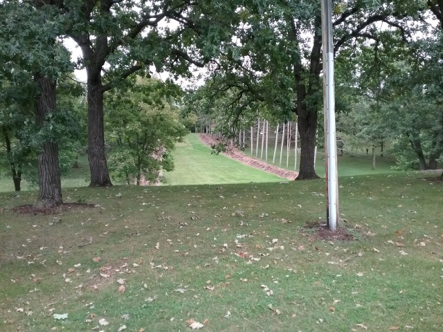 The wide swath through the burr oaks in Riverside Park that indicates a 1970s-era toboggan hill used to be there, St. Cloud, MN, September 13, 2019.